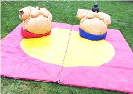12ft x 12ft Children & Adults Sumo Suits with Groundsheet
